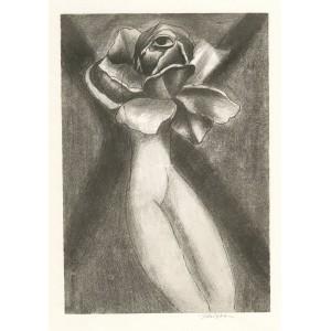Žena-růže