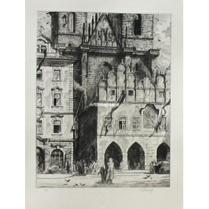 Domy před Týnským chrámem (Staroměstské náměstí)