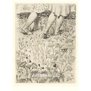 Dívčí nohy v trávě