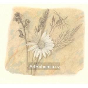 Polní květiny s čmelákem