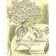 Zátiší s květinami a otevřenou knihou (zelená varianta)