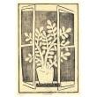 Květináč s kaktusem na okně (pocta Vladimíru Komárkovi 50*)
