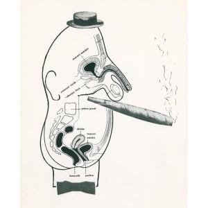 Pán (1966) - Kolážové anekdoty III