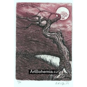 Pokroucený strom u jezírka
