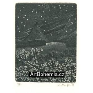 Noční krajina s hvězdami