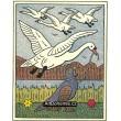 Tetřev a labutě