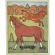 Kůň a zebra