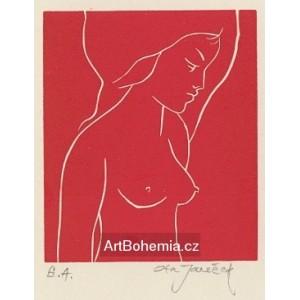 Zamyšlený dívčí půlakt z profilu, opus 532 (červená varianta)