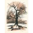 Strom v zimě (Jaroslav Hořánek *60)