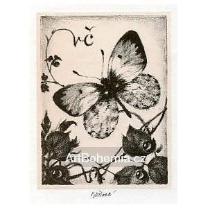 Motýl na révě, opus 1275