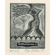 Dívčí akt s křídly (Apollinaire)
