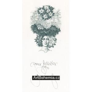 Slovenská dívka s květy ve vlasech na pozadí Vysokých Tater (černá varianta)