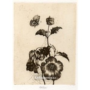 Květina s motýlkem, opus 1225