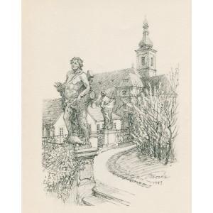 Mladý zvoník