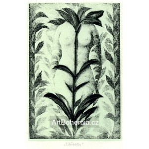 Akt v rostlinách, opus 699