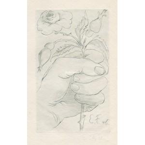Ruka držící šípkovou růži, opus 176