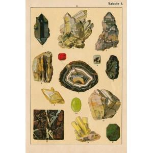 Nerosty a horniny I