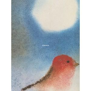 Červený ptáček a slunce
