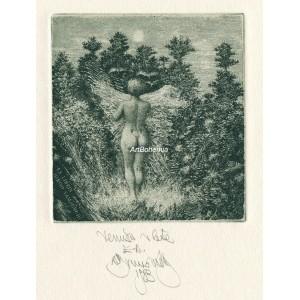 Venuša v lete - Venus in Summer, opus 502