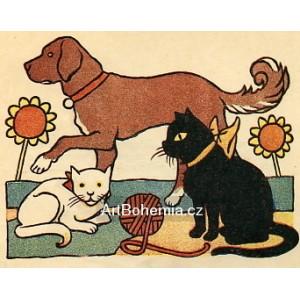 Abecede, kočka přede, kocour motá, pes počítá... (Moje abeceda)