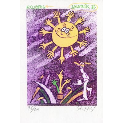 Sluníčko pro Honzíka
