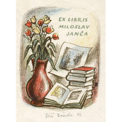 Zátiší s tulipány a knihami