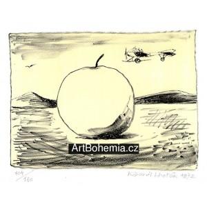 Velké jablko a letadlo