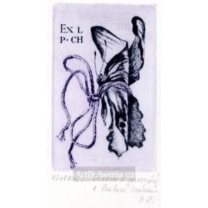 Svázaný motýl