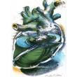 Srdce (Srdce králů), opus 94