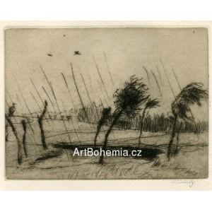 Déšť, opus 116
