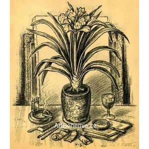 Zátiší s květináčem clivie, opus 151
