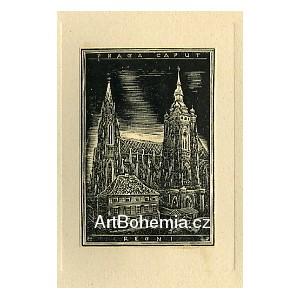 Chrám sv.Víta (Praga Caput Regni)