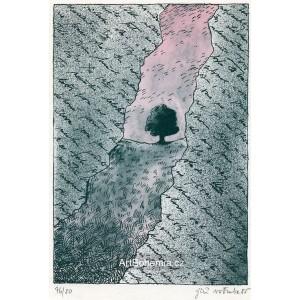 Dopis od básníka (z alba JŠ 50 - vydáno k padesátinám Jiřího Šalamouna)