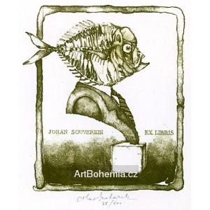 Busta s rybí hlavou, opus 47