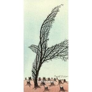 Pták strom
