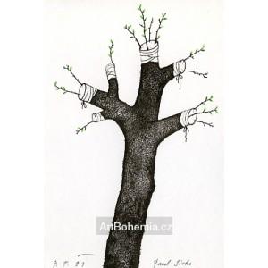 Roubovaný strom