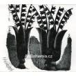 Dvě vázy s konvalinkami (J.Seifert: U malíře V.K.) - PF 1988 Vladimír Komárek
