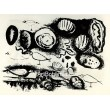 Coquillages et oiseaux (Shells and birds) (19.2.1946)
