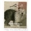 Bobtail - Psi Evy Haškové II