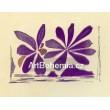 Fleurs de l´air - Lettera amorosa (1963), opus 127