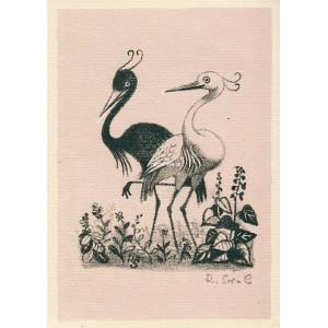Dva pohádkoví pelikáni
