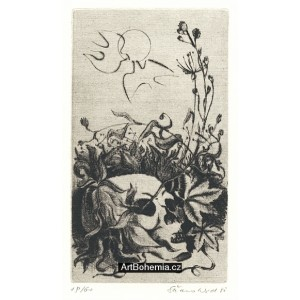 Lebka v květinách (k 170. výročí narození K.H.M.)