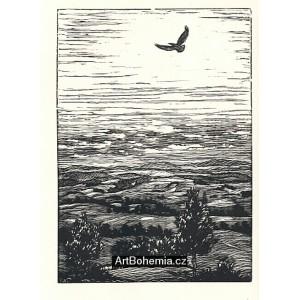 Balada o jaře 1848 (Balady a romance)