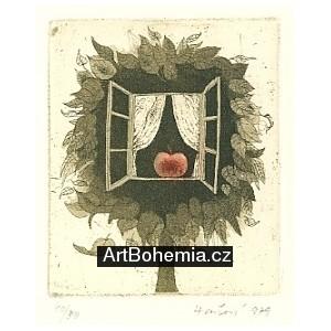 Otevřené okno s jablkem
