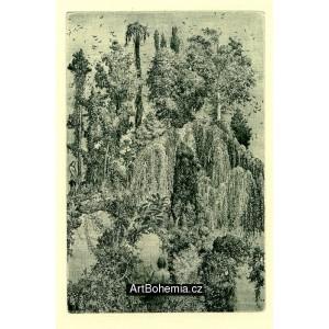 Ovidius: Příběhy Orfeovy - bibliofilie s komplet 6 grafikami (varianta B)