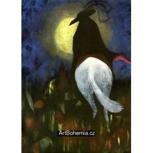 Černý jezdec na bílém koni