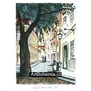 Bartolomějská ulička (Pardubická nokturna)
