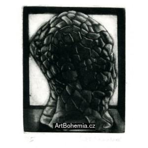 Golemova hlava (Pocta Vladimíru Boudníkovi)