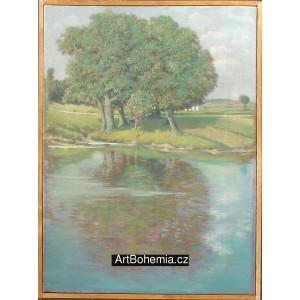 Zrcadlení stromů u řeky
