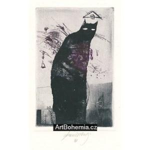 Černá kočka (Rudolf Hrušínský *70)